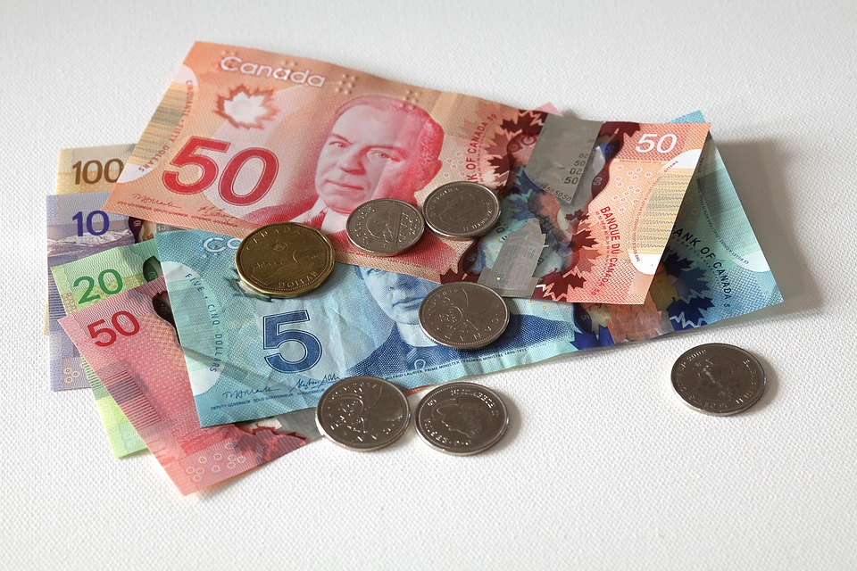 cizí dolary