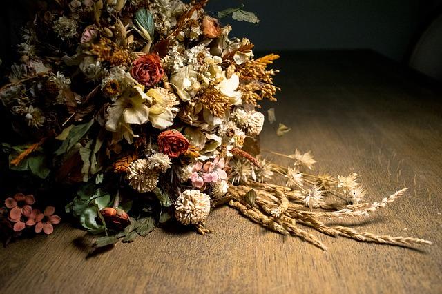 usušené květiny